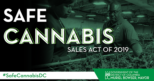 Safe Cannabis Sales Act of 2019