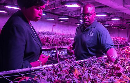 Mayor Bowser at Cultivation Center